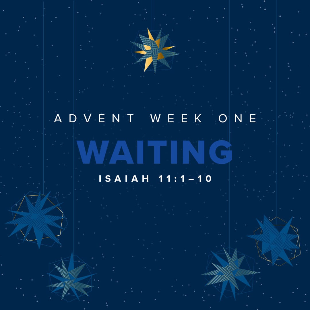 ADVENT WEEK ONE